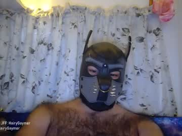 [11-07-20] hairygaymer record public webcam