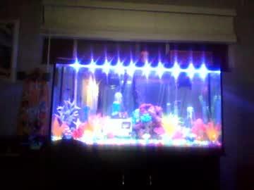 [24-12-20] oilfieldtrashlb23 private show video from Chaturbate